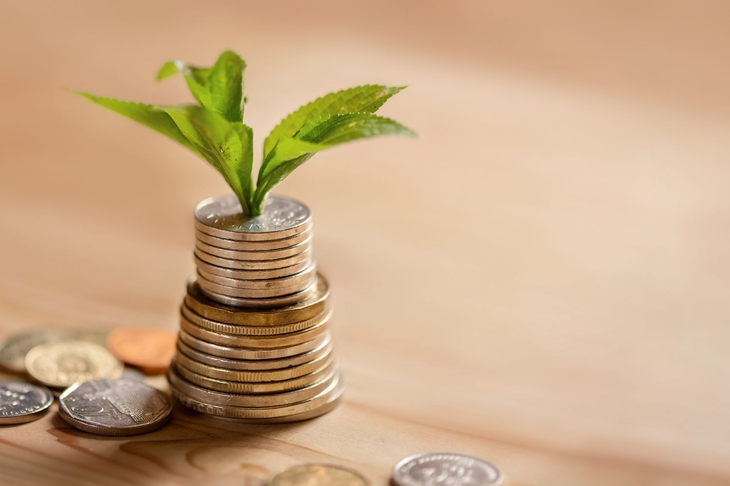 The Passive Investing Blueprint: Build Wealth Passively
