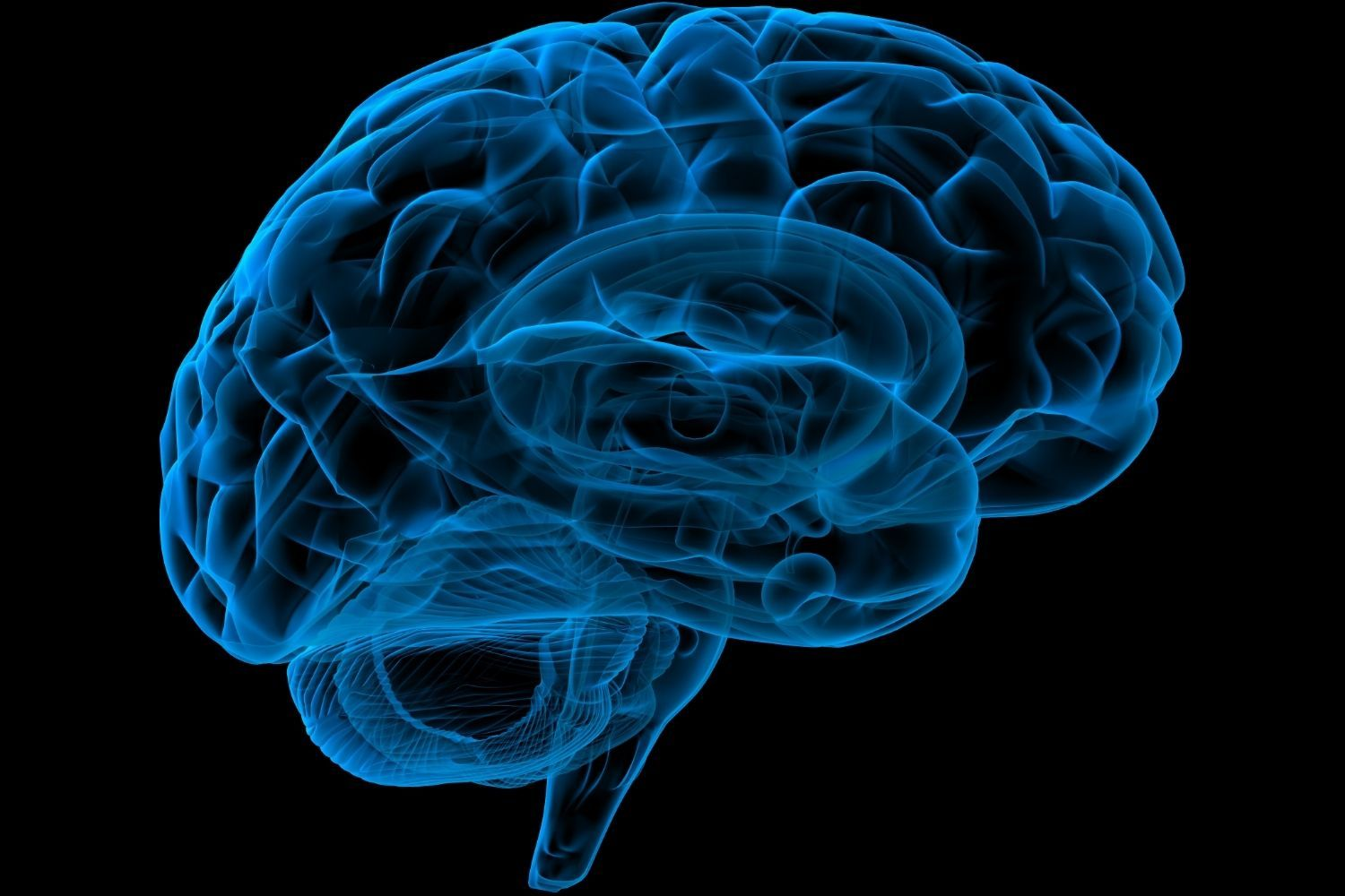 Brain Fitness: Train Faster Thinking, Better Memory And Focus
